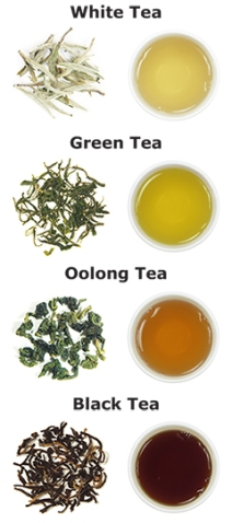 types-of-tea